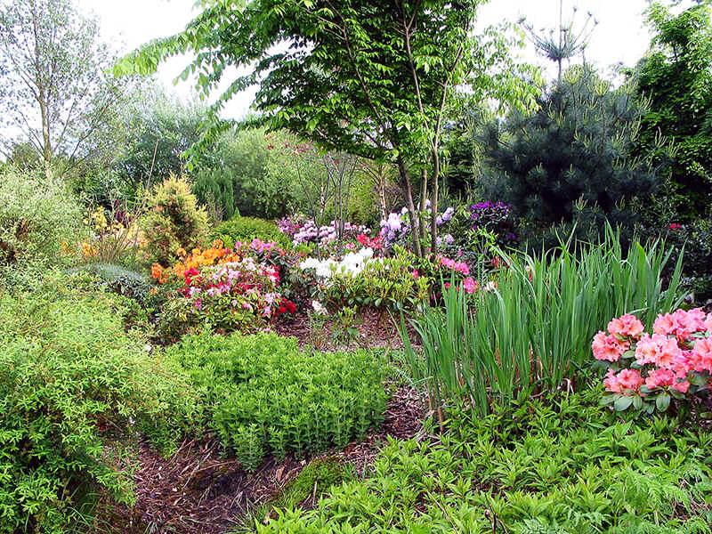 De tuin van de verbeelding